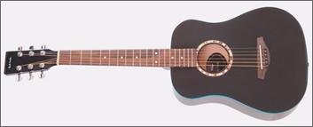 paul smith guitar